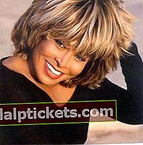 Tina Turner: Bio, Größe, Gewicht, Maße