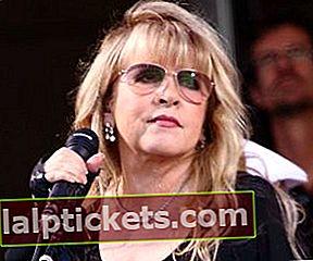 Stevie Nicks: Bio, Fakten, Angelegenheiten, Körperstatistik